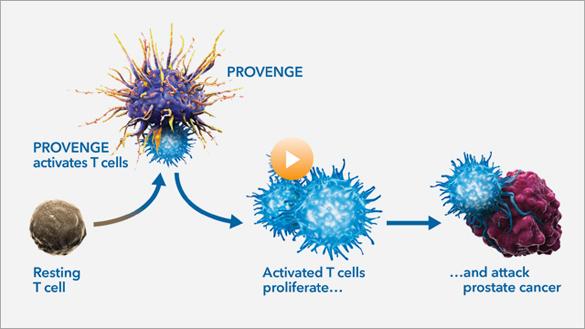 иммунотерапия при онкологии препараты